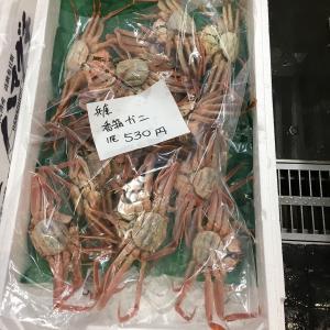 【市場マニア】豊洲パトロール(香箱ガニ、厚岸カキ、のどぐろ味醂干し)