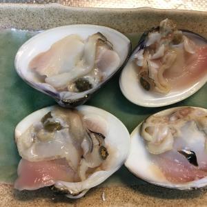 【レシピ+1】蛤の酒蒸し(実践1回)