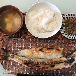 【レシピ+1】冷蔵庫で干物作り(実践1回)