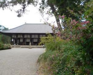 唐招提寺と萩