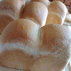 ビーガンの知人への手作りパン