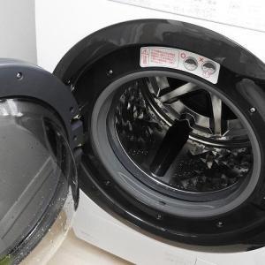 ドラム式洗濯機の【ゴムパッキンのおへそ】みたいなところにいつの間にかゴミが溜まってた!