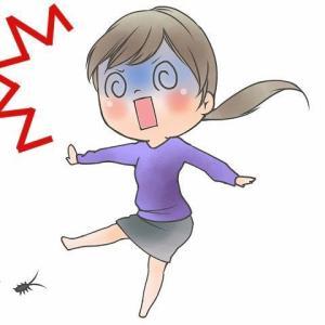 【ソファの下から、ゴキブリ】我が家のビックリ事件簿