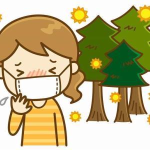 【子供の花粉症】突然の発症から3週間、症状の変化などの記録(我が家の備忘録)