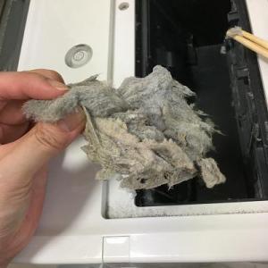 パナソニックのドラム式洗濯機掃除【乾燥フィルターの奥】の綿埃と、各フィルターの汚れの酷い場所を教えます!