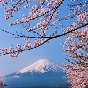 富士山とさくらの話