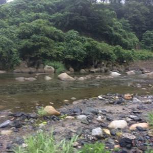 岐阜の渓流S川FF20200827