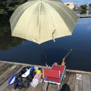 愛知県佐屋川へらぶな釣り20210927