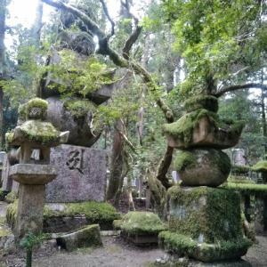 苔むした石塔と巨樹の霊場! 高野山「奥之院」を歩く