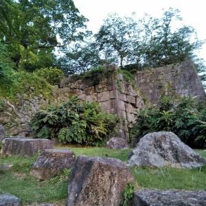 """情趣あふれる""""古代遺跡感""""! 熊野川に面した水陸の要塞「新宮城」をゆく"""