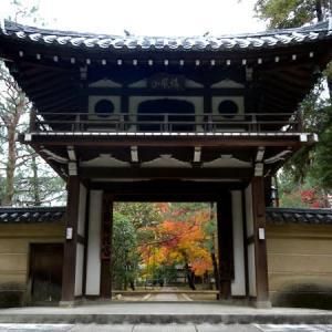 京都 紅葉100シリーズ  龍寳山 大徳寺