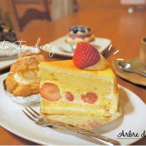 【PR】菓子の樹/札幌市/地域に根づくやさしいケーキ♡札幌洋菓子協会会長も務めるオーナーのお店とは?