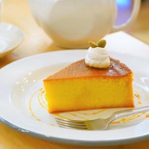 カフェドルフィン/札幌市/1番人気の「かぼちゃのケーキ」が素朴で美味。電源、Wi-Fi完備の老舗カフェ