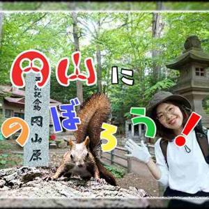 円山登山|札幌自然歩道「八十八ヶ所ルート」から山頂を目指してみました