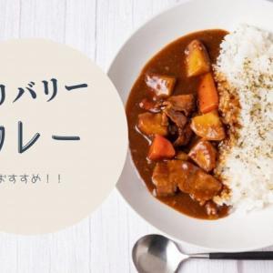 【デリバリー】札幌でおすすめの「カレー」12選!ボリューム満点でリーズナブル!