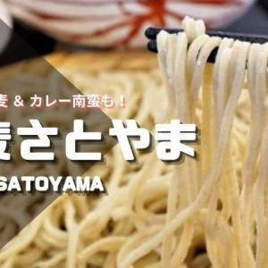 蕎麦さとやま/札幌市/自家製粉・打ち立ての二八蕎麦!カレー南蛮・丼ものもおすすめ