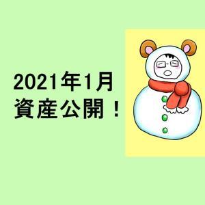 <資産公開>2021年1月現在の資産・持ち株・ポートフォリオ・実現損益を公開