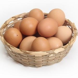 サラリーマン投資家だからこそ「卵は同じカゴに」っていうケッコー大事なお話