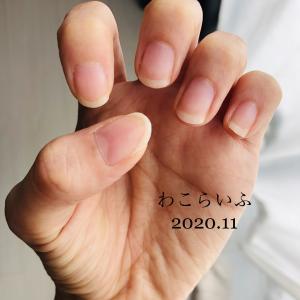 2019年11月度爪育て ジェルなしで爪を育てる!