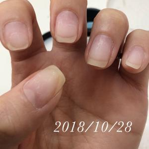 育爪!男爪から女爪の道(2018年1月~)
