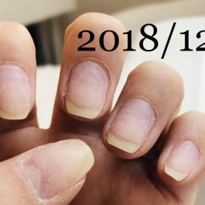 育爪!男爪から女爪の道(2018年1月~2018年12月)