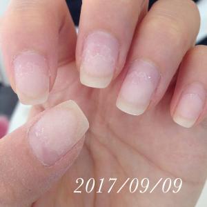 育爪!男爪から女爪の道(2017年 1月~12月)