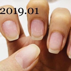 育爪!男爪から女爪の道(2019年 1月~4月)
