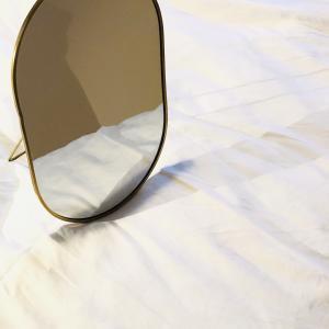 朝と晩、身なりを整えるのが楽しみになる鏡