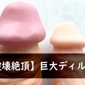 【破壊絶頂】巨大ディルド14選!極太ロングの強烈なアブノーマルの快感!