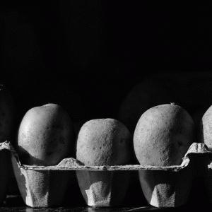 歳を取ったイモとこれからのイモの在り方についての覚書|「ただ歳上であるというだけの理由で」