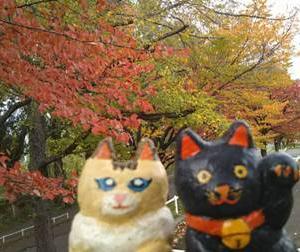 秋の札幌農試公園