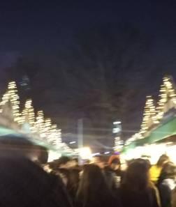 ミュンヘンクリスマス市(札幌ですよ~(=^・^=)/)