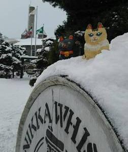 雪の余市・小樽・円山動物園♪