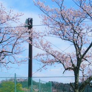 4月のお出かけチャレンジ!