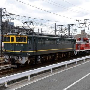 予想が外れた85レ貨物列車の牽引機&予想外の配給列車撮影の巻(R3.9.6)