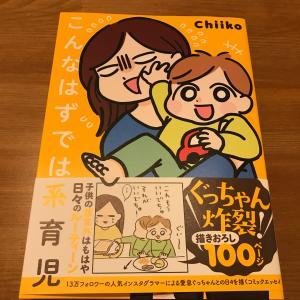 【書籍】こんなはずでは系育児 育児で悩んでいる方に読んでほしい