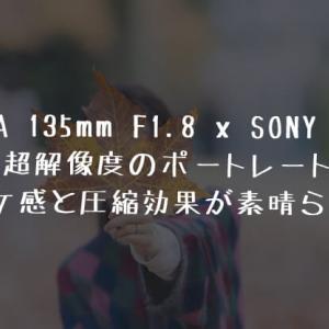 SIGMA 135mm f1.8レビュー| α7Ⅲでポートレート撮影したらボケ感と圧縮効果が凄まじい