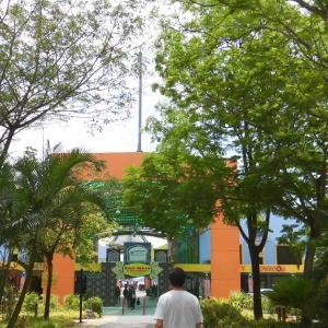 マレーシア2019 6日目:オラウータン島→マレーシアでIKEAに行ってみた