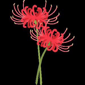 曼珠沙華(マンジュシャカ)
