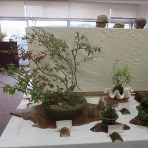 展示会作品から  パ-ト2