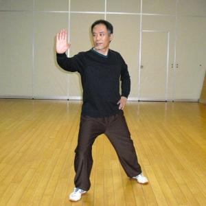 陳式太極拳 懶扎衣(らんざつい)の研究