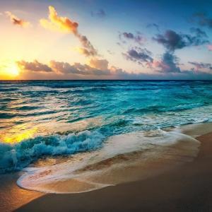 海の4つの癒し効果。毎朝海に行って幸せになろう