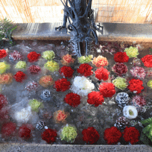 最北の花手水と神玉