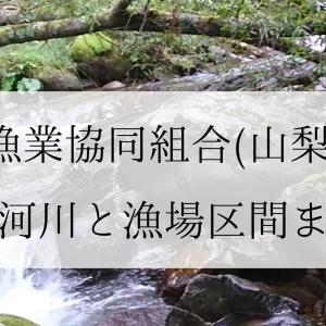 峡東漁協の登録河川と漁場区間まとめ