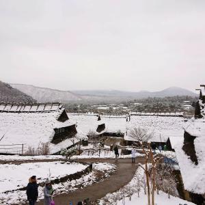 【西湖いやしの里根場】観光客に大人気!?富士山が望める茅葺屋根の集落施設