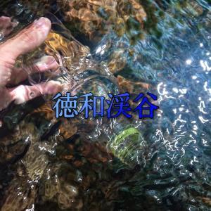 【徳和渓谷】駐車場から徒歩0分で水遊び!キレイな水とハイキングも楽しめる隠れ自然満喫スポット