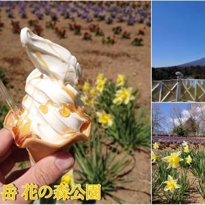 【南八ヶ岳 花の森公園】必見のそばはちみつソフト♪収穫体験や四季折々の花々が楽しめる大きな公園