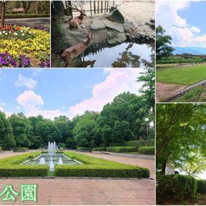 【万力公園】お食事処と売店を併設!深緑の園内と小さな動物広場を有する大きな公園