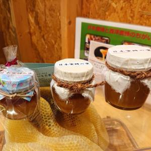 【あじわい百花蜜】おいしく健康改善できる幻のハチミツ!日本ミツバチ専門の養蜂家直営店
