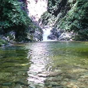 【尾白川渓谷】川遊びからキャンプまで!尾白川の全てをご紹介